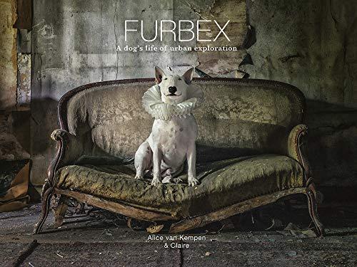 Furbex By Alice van Kempen