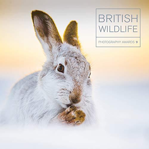 British Wildlife Photography Awards 9 By Maggie Gowan