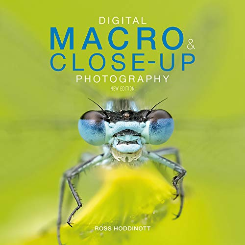 Digital Macro & Close-up Photography By Ross    Hoddinott