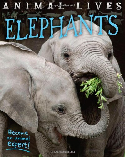 Animal Lives: Elephants By Sally Morgan