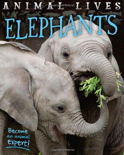 Animal Lives: Elephants by Sally Morgan