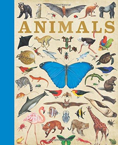 Animals By Camilla de le Bedoyere