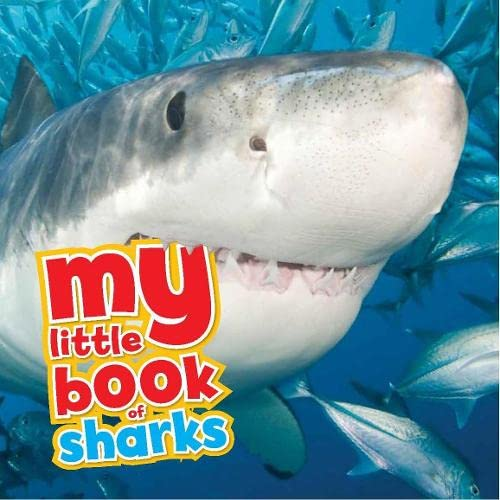 My Little Book of Sharks By Camilla de le Bedoyere