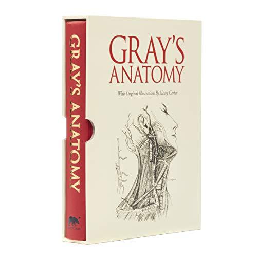 Grays Anatomy By Henry Gray