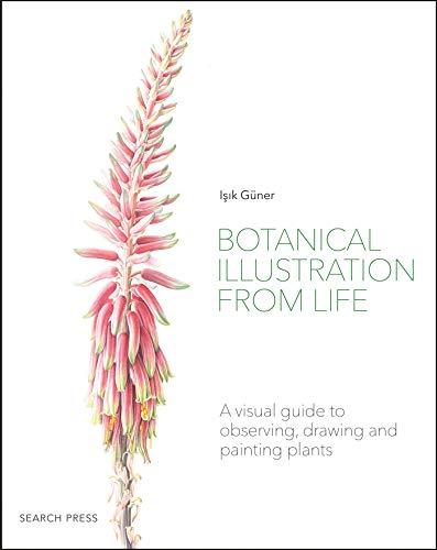 Botanical Illustration from Life By Isik Guner