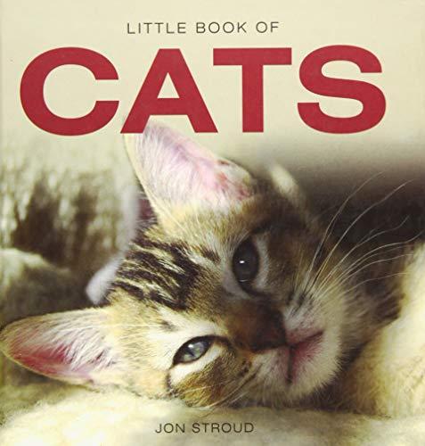 Little Book of Cats by Jon Stroud