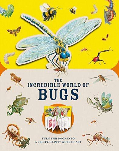Paperscapes: The Incredible World of Bugs By Melanie Hibbert