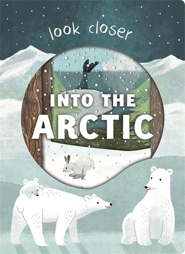 Into the Arctic By Roger Priddy