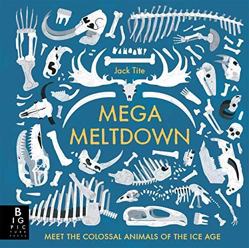Mega Meltdown By Jack Tite
