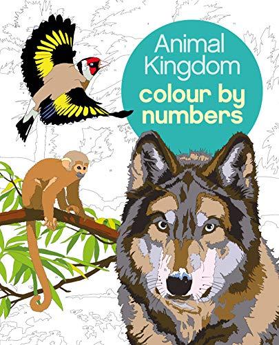Animal Kingdom Colour by Numbers von Martin Sanders (Illustrator)