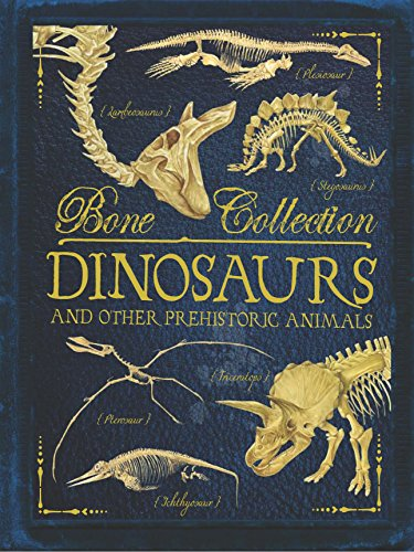 Bone Collections: Dinosaurs By Camilla de le Bedoyere