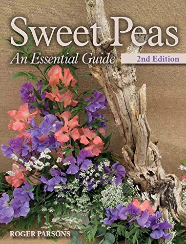Sweet Peas By Roger Parsons