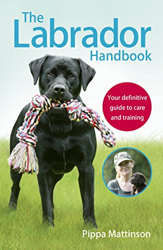 The Labrador Handbook: The definitive guide to training and caring for your Labrador By Pippa Mattinson
