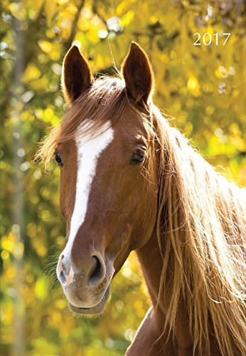 Horses 2017 A5 Padded Diary