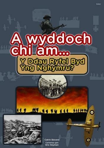 Cyfres a Wyddoch chi: A Wyddoch Chi am y Ddau Ryfel Byd yng Nghymru? By Catrin Stevens