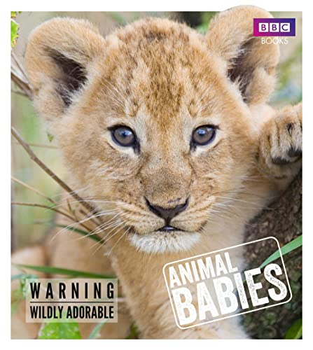 Animal Babies By Laura Barwick