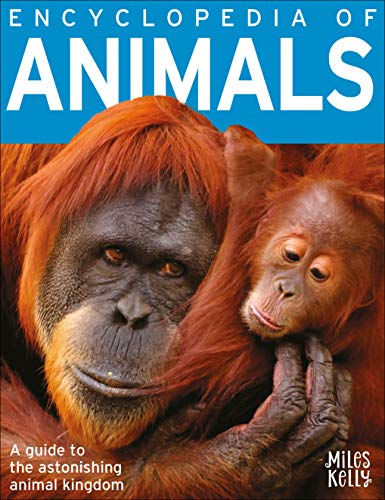 B384 Encyclopedia of Animals By Kelly Miles
