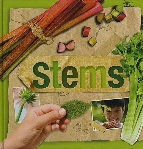 Stems By Steffi Cavell-Clarke
