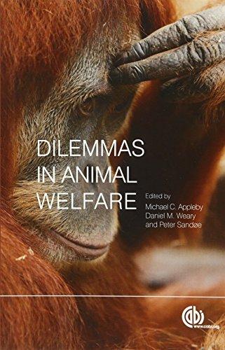 Dilemmas in Animal Welfare By Edited by Michael Appleby