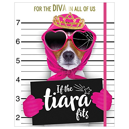 If the Tiara Fits By Make Believe Ideas