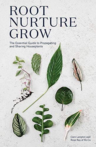 Root, Nurture, Grow By Caro Langton
