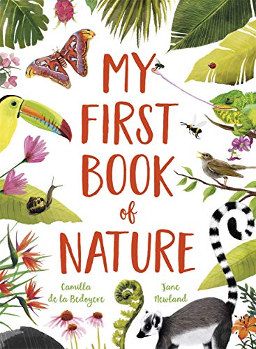 My First Book of Nature By Camilla De La Bedoyere