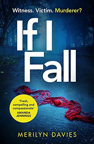 If I Fall By Merilyn Davies