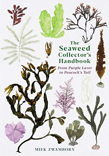 The Seaweed Collector's Handbook By Miek Zwamborn