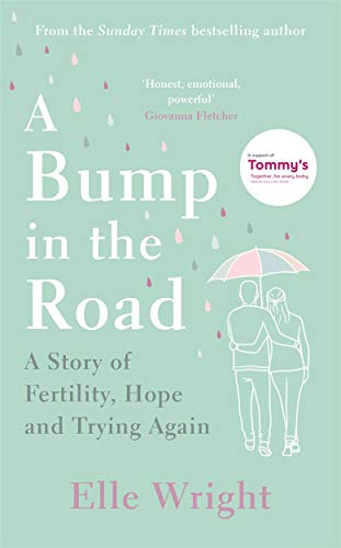 A Bump in the Road By Elle Wright