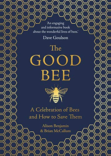 The Good Bee By Alison Benjamin