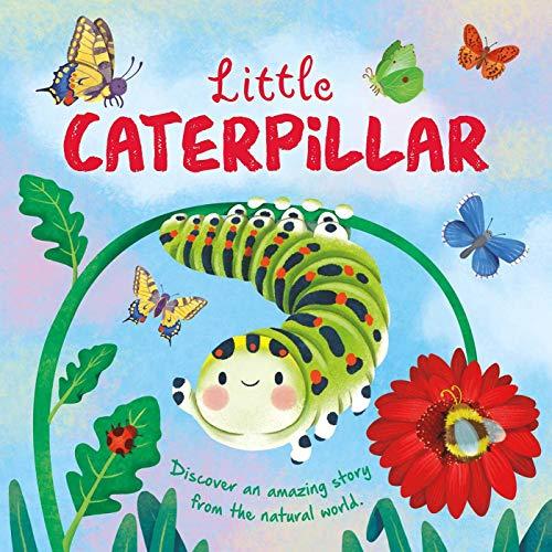 Nature Stories: Little Caterpillar By Igloobooks