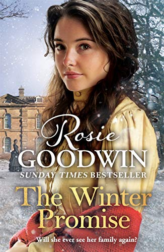 The Winter Promise By Rosie Goodwin