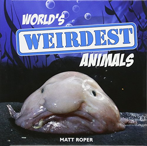 World's Weirdest Animals by Matt Roper