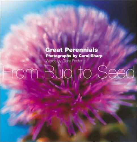 Ten Best Perennials By Clare Foster