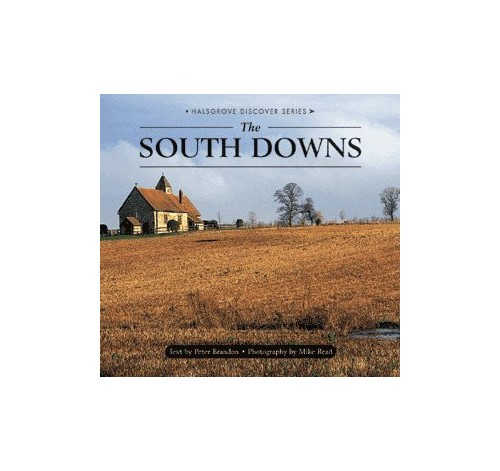 The South Downs By Peter Brandon