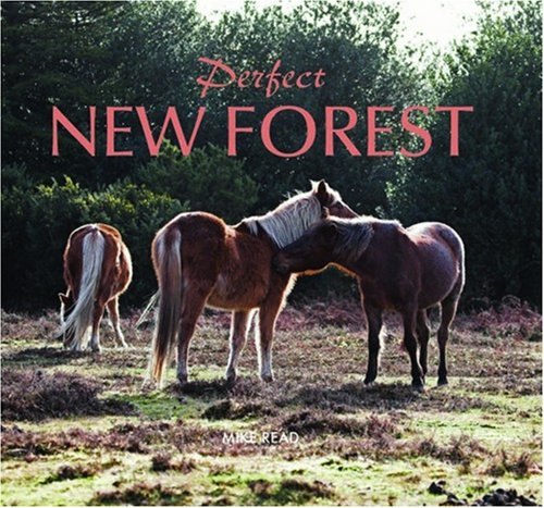 Perfect New Forest By Mike Rea