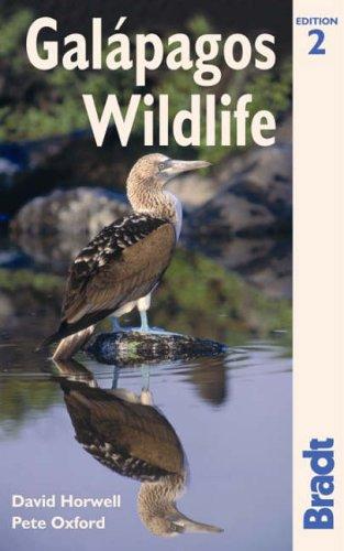 Galapagos Wildlife By David Horwell