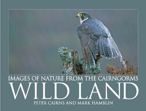 Wild Land By Mark Hamblin