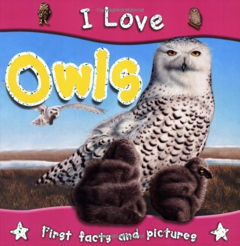 I Love Owls By Steve Parker