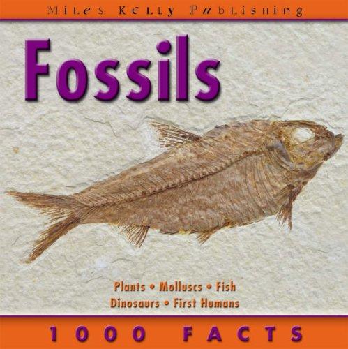 Fossils By Helen Pellant