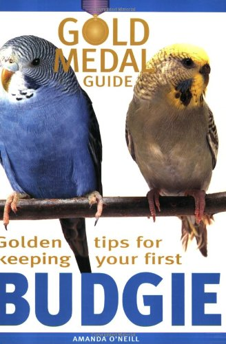 Budgie (Gold Medal Guide) - Everything you need to know to keep a healthy, happy budgerigar By Amanda O'Neill