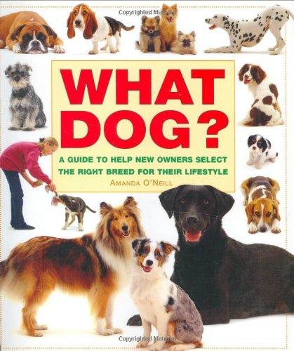 What Dog By Amanda O'Neill