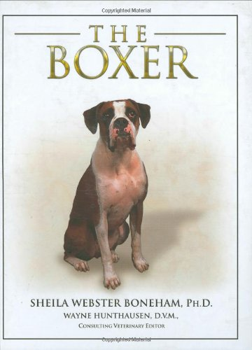 The Boxer By Sheila Webster Boneham