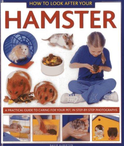 How to Look After Your Hamster von David Alderton
