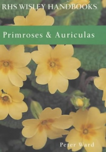 Primroses and Auriculas by Peter Ward