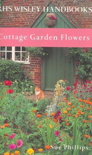 Cottage Garden Flowers by Sue Phillips