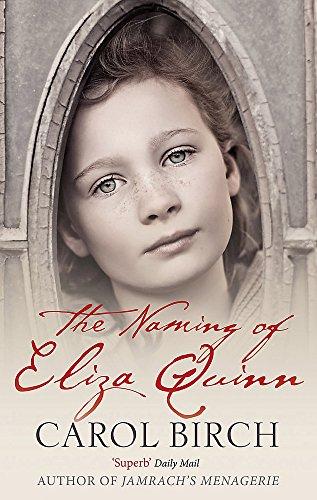 The Naming Of Eliza Quinn By Carol Birch