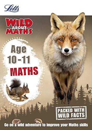 Maths Age 10-11 von Letts KS2