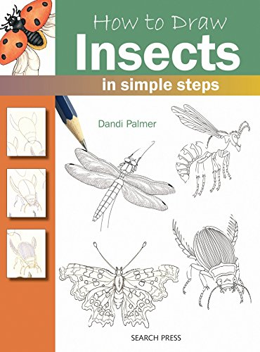 How to Draw: Insects By Dandi Palmer