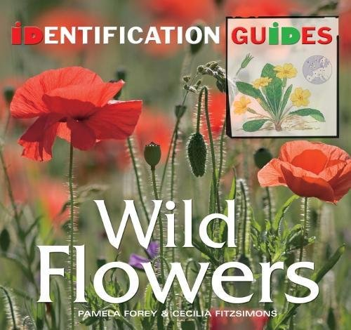 Wild Flowers: Identification Guide by Pamela Forey